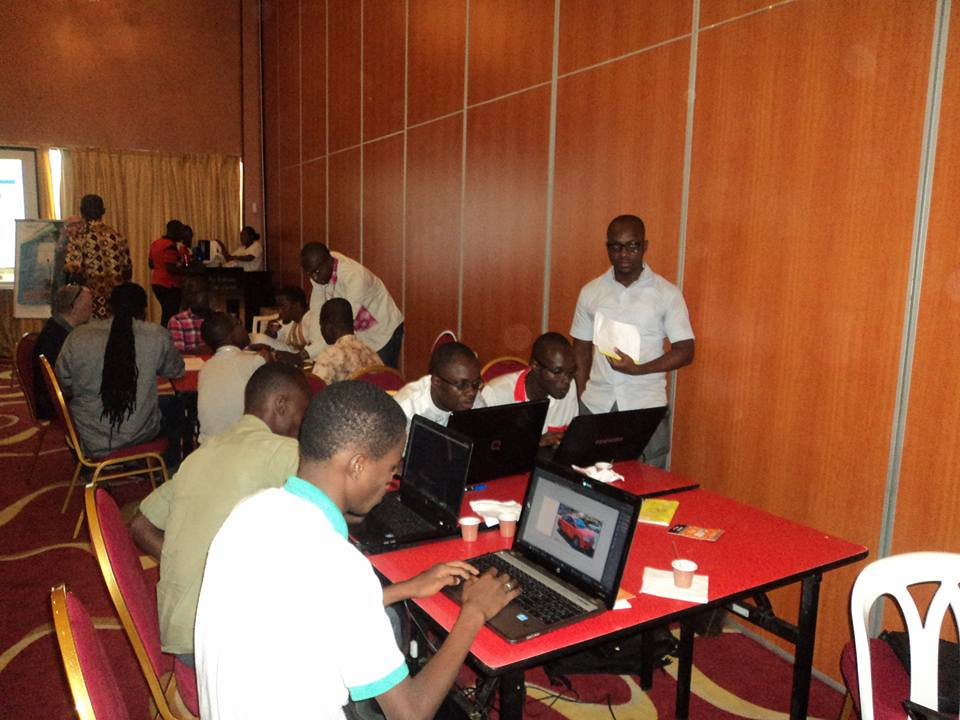 panel-consulting-2015-africa web.jpg - panel consulting