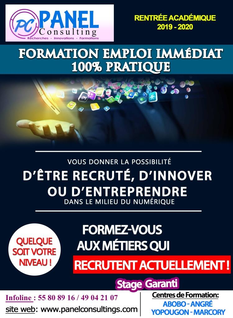 formation-emploi-immediat-panel-consulting-annee_2019_2020.jpg - panel consulting