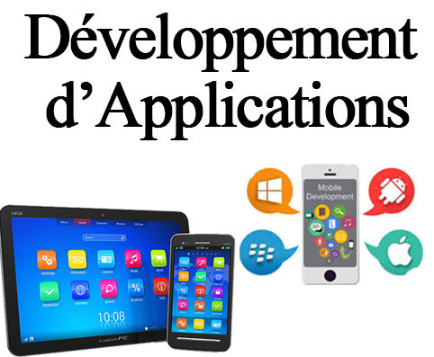 developpemnt application-panel-consulting