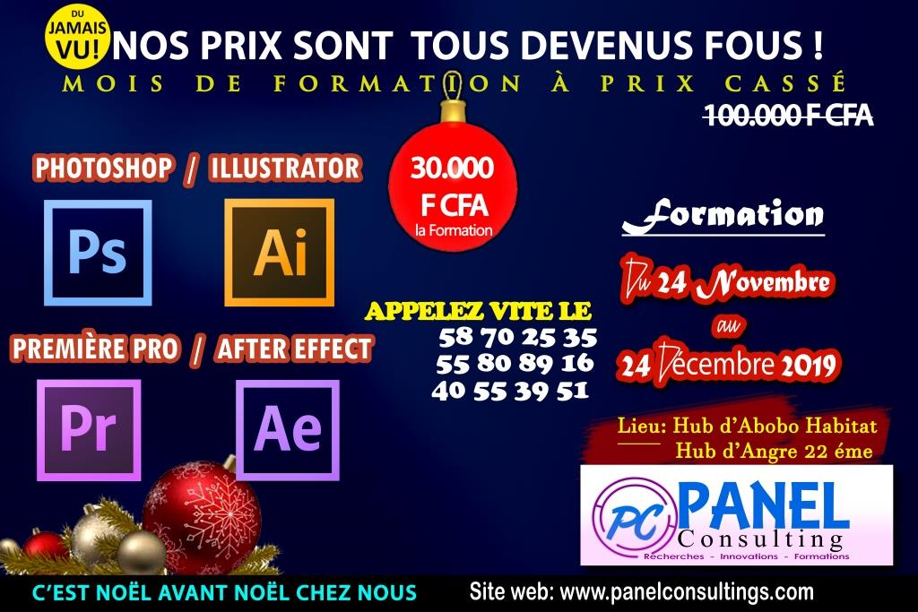 promotion formation adobe mois de noel_panel_consulting.jpg-panel-consulting