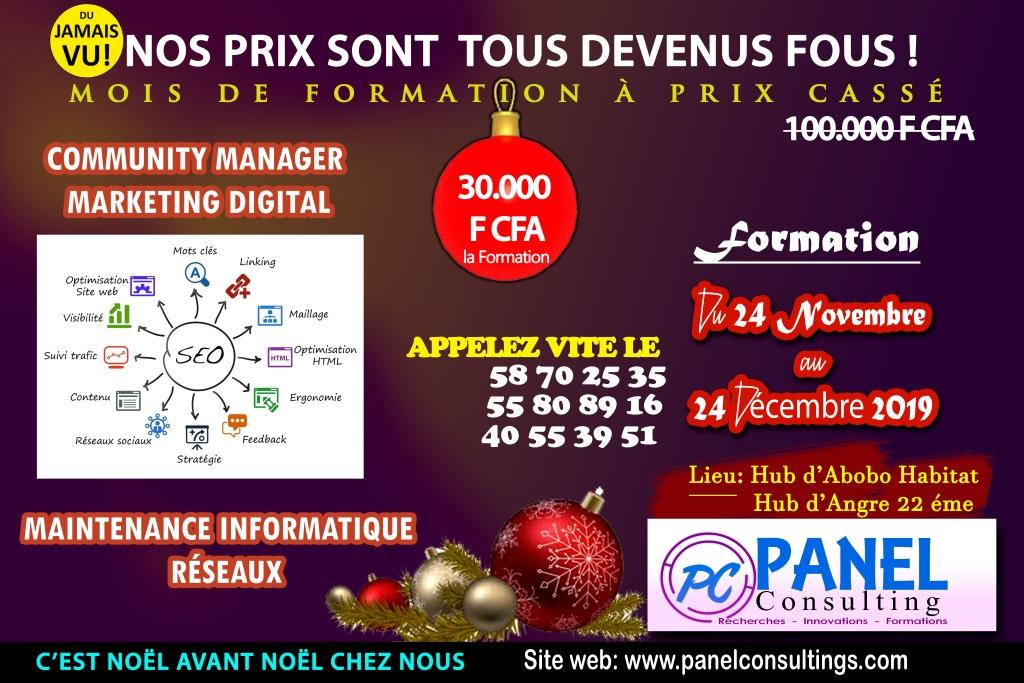 promotion formation digital_marketing_community_manager mois de noel_panel_consulting.jpg-panel-consulting