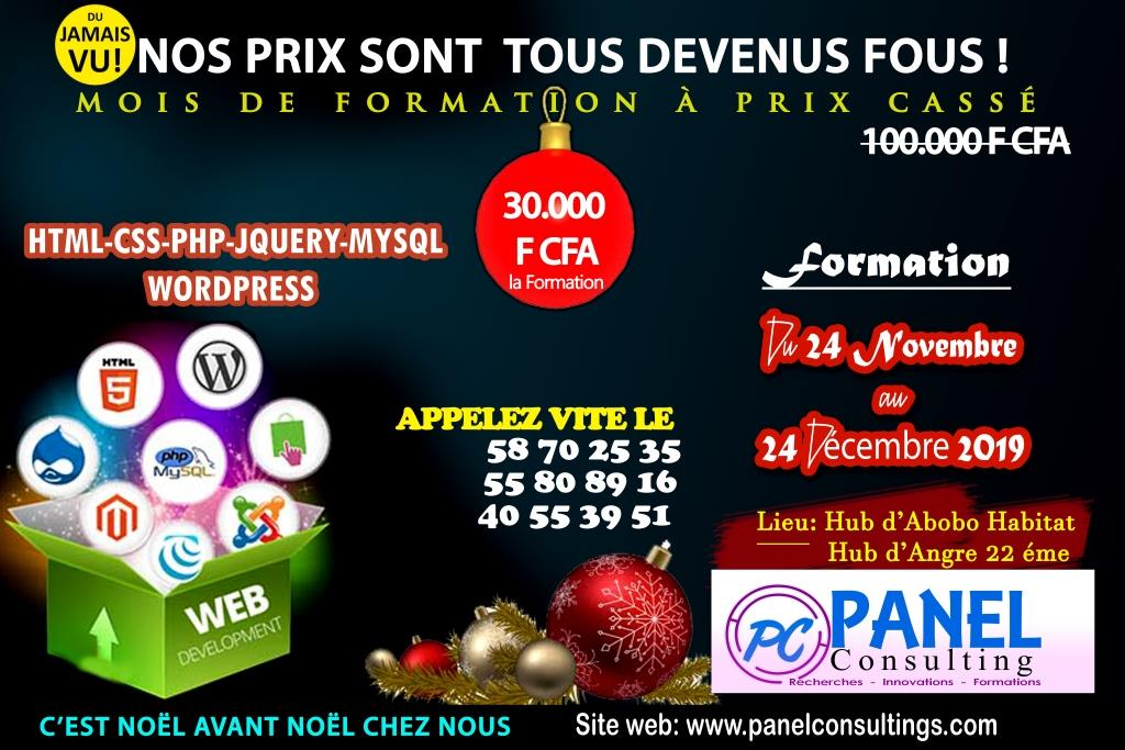 promotion formation site web mois de noel_panel_consulting.jpg-panel-consulting